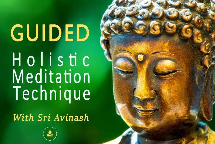 Guided Holistic Meditation Technique Audio with Sri Avinash