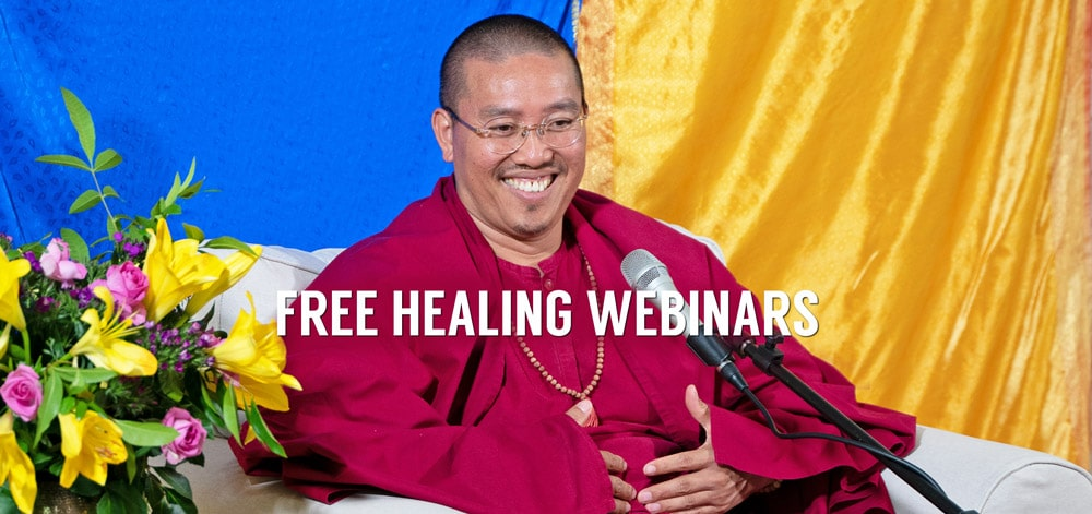 If image is not displaying correctly, click here for testimonials about Sri Avinash's free Healing Webinars >
