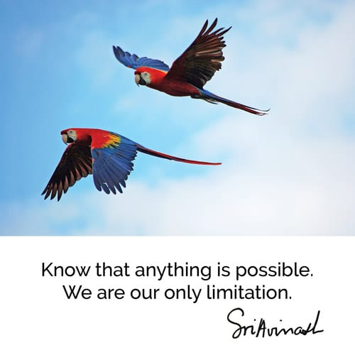 Know that anything is possible. We are our only limitation.