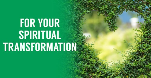 Articles for your spiritual transformation