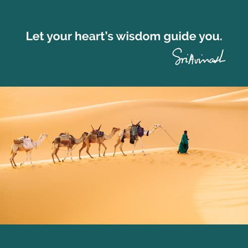 Let your heart's wisdom guide you