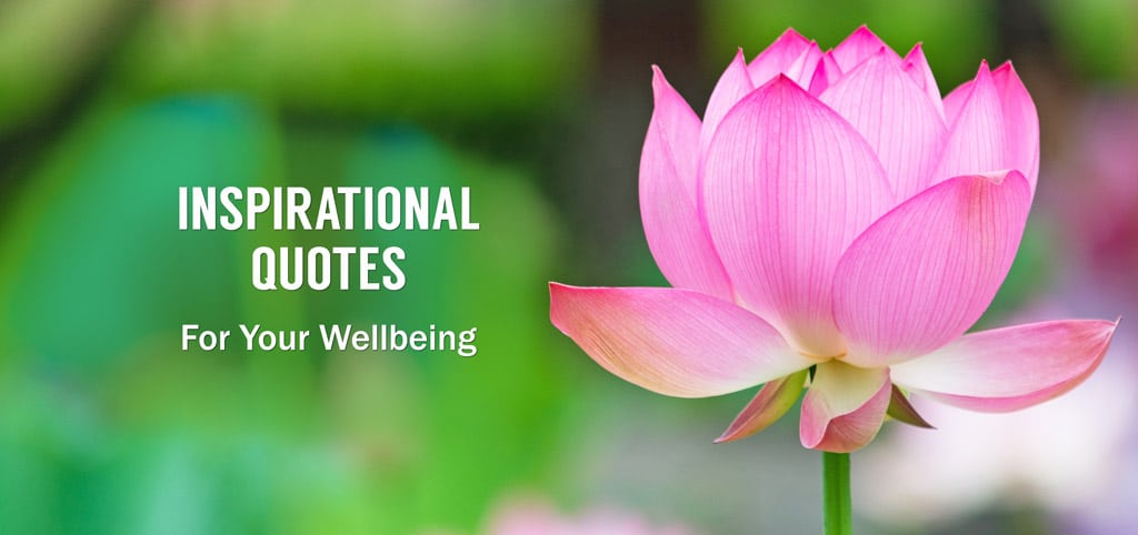 Inspirational Quotes for Your Wellbeing