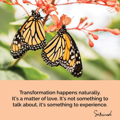Transformation happens naturally. It's a matter of love. It's not something to talk about, it's something to experience.