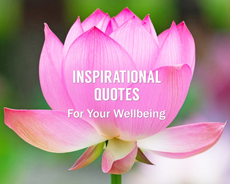 Enlightenment Quotes - Related Quotes: Inspirational Spiritual Quotes for Your Wellbeing