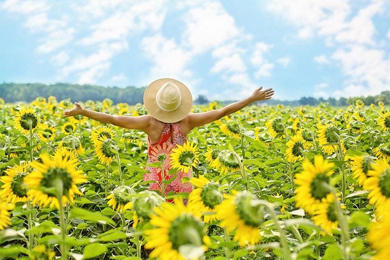 Manifest abundance, health, happiness