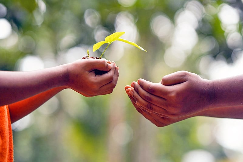 Related Article: The transformational power of giving