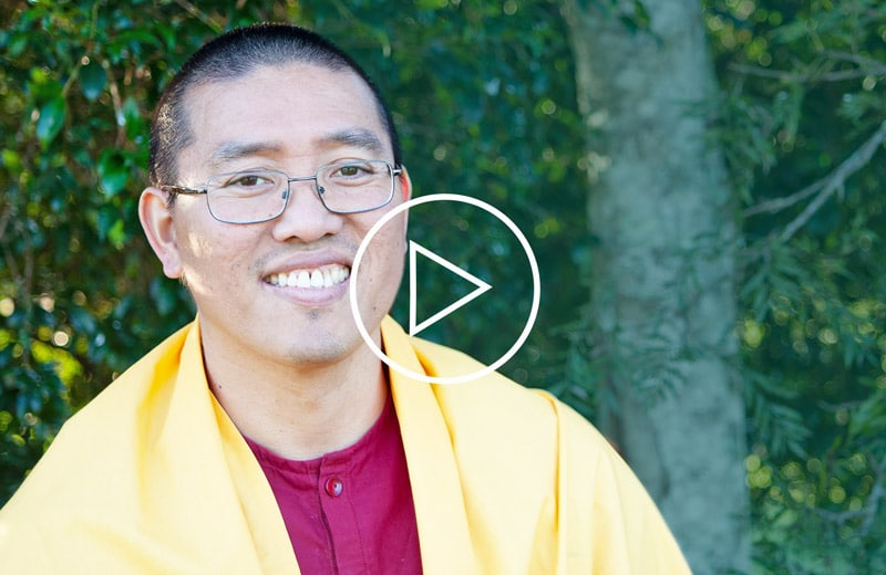 A Video: Do we need a purpose in life?